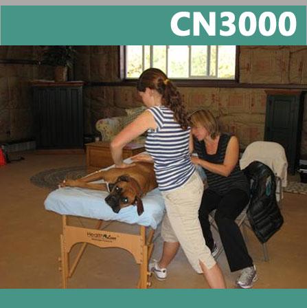 cn3000